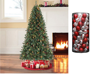 If You Are Looking To Purchase A Christmas Tree