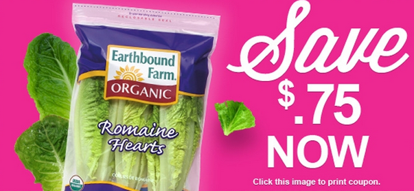 romaine-coupon-earthbound