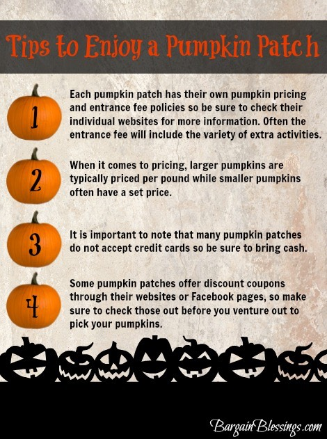 tips-to-enjoy-a-pumpkin-patch