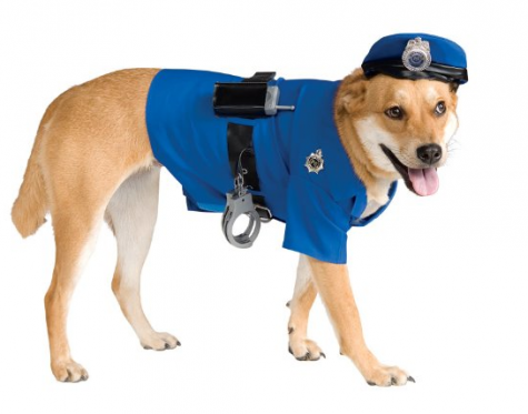 dog-costumes-amazon
